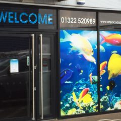 Aquacadabra Digital Print Contravision Window Display